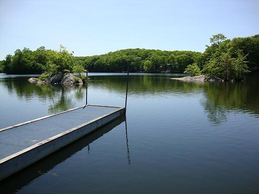 Properties For Sale In Spring Lake Nj
