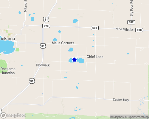 Chief Lake - Manistee County Map